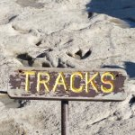 Lots of tracks