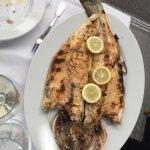 1kg sea bass