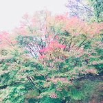 Photo de Chausuyama