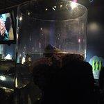 Photo of Seattle Aquarium