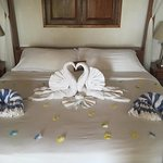 The king bed with towel swans. Housekeeping made different animals every day.