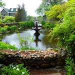 Lovely pond with fountain.