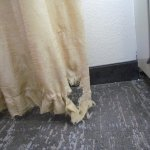 Shredded curtain in room