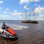 Φωτογραφία: Capt. Ron's Awesome Everglades Adventures