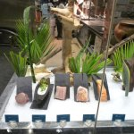 Display at front of restaurant of fish
