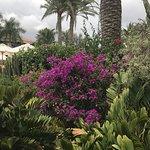 Photo de Seaside Grand Hotel Residencia
