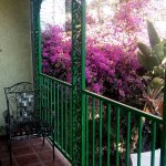 Balcony, wrought iron, and bougainvillea in front of our room
