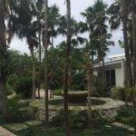Miami Beach Botanical Garden Foto