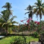 Foto di Mafia Island Lodge