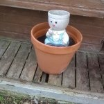 """Broken decking """"safely"""" covered with flower pot ... how long has this been like this?"""