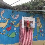 Punch and Judy looking very sorry and ready for overgrowth!