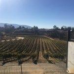 Foto de Grapeline Wine Tours