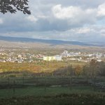 Blick über Ingelheim