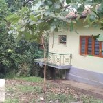 external cottage view