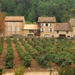 Photo de château d'Agel