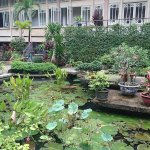 Photo of Museum of Vietnamese History