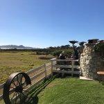 Overlooking pastures