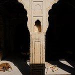 Photo de Narayan Niwas Castle