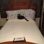 Lizzie Borden Bed and Breakfast Foto