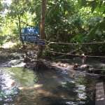 Photo of Namtok Ron (Hot Spring Waterfall ) - Khlong Thom