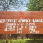 Photo of Serengeti Serena Safari Lodge