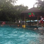 Photo of Chimelong Water Park