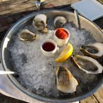 $1 Oysters on the half shell for Happy Hour
