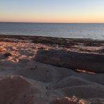 Photo de Sandbars on Cape Cod Bay