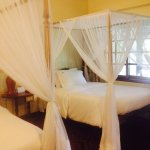 Foto de Safari Park Hotel