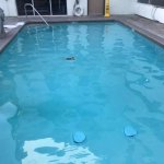 Pool - small, but hardly used so it's all yours!