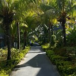 Photo de Paradis Beachcomber Golf Resort & Spa