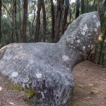 Bilde fra Phallic Rock (Ka Ule o Nanahoa)