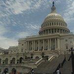 Esplendido edificio, simbolo de la politica en USA.
