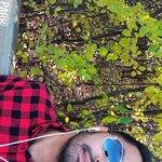 IMG_20171021_133342_365_large.jpg