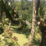 Foto de The Kampung Resort Ubud