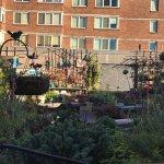 Outside rooftop garden