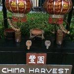China Harvest Restaurant의 사진