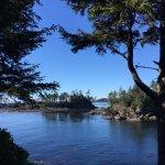 Pacific Rim National Park Foto