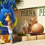 Perna Perna Mossel Bay
