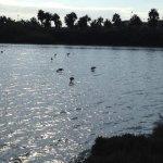 Foto de Parque Regional Salinas