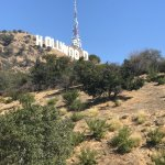 Hollywood sign. not many tours go up there