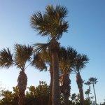 Фотография DiamondHead Beach Resort