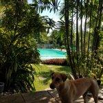 La Pernela Beachfront Resort Bild