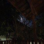 Moonlight at balcony