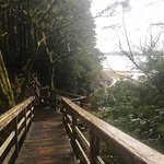 part of the walk off of the wild pacific trail -