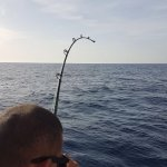 Photo of Fish On