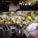 Fresh oysters galore!