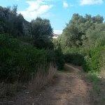 Path down to Cala en Brut beach