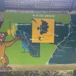 Photo of Andasibe-Mantadia National Park  (Reserve of Perinet)