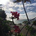 Foto de Aitutaki Escape